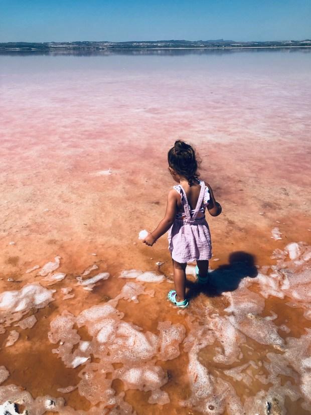 laguna rosa torrevieja (9)