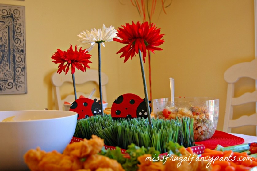 Outdoor Ladybug Garden Party Centerpiece Decor | missfrugalfancypants.com