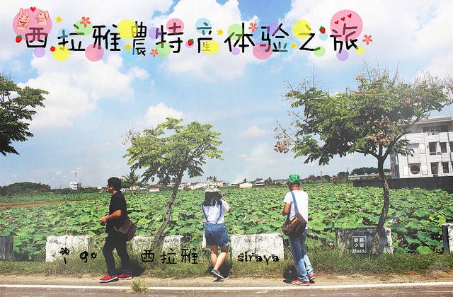 台南自由行   西拉雅農特產體驗之旅 i 購西拉雅 與我們一起沉浸在西拉雅的故事中 體驗最在地的農作吧!