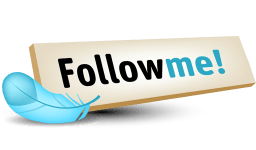 Follow Me Twitter Button - Mission-Cashflow.de