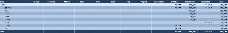 Optionsdepot & Einkommen durch den Optionshandel - Offene Optionen Tabelle 2021