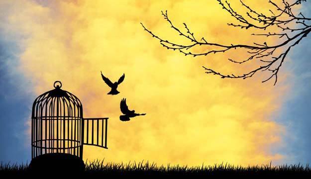 Comment changer pour être libres et créer la vie de ses rêves