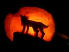 Beachcomber Pumpkin Carving Halloween Contest