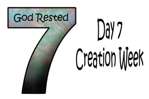 7_Day 7 Creation Week