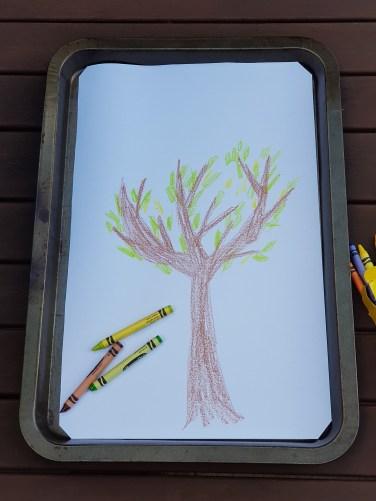 Draw a bush