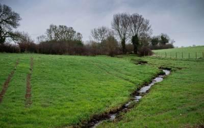 Réduire l'érosion des sols avec des haies bocagères