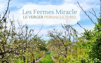 Les Fermes Miracle, des vergers étonnants en permaculture