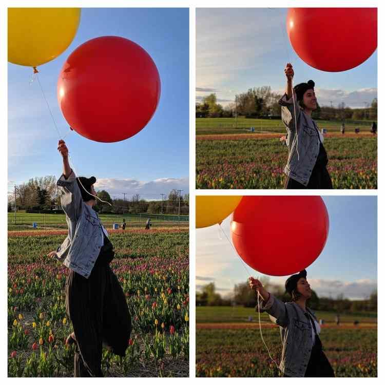 Des ballons dans un champs de tulipes