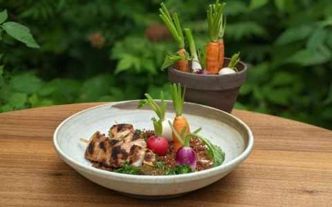 dindon et jardin de légumes