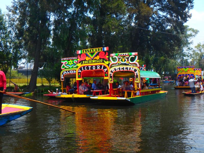 Xochimilco, Mexico City, Dave Millers Mexico