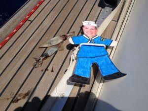 25. Flat Mr. Davis with two squids dropped overnight by sea birds fishing around Joyful.