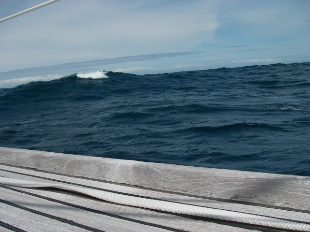 50. We had some lively seas some of the time on the way to Pittwater.