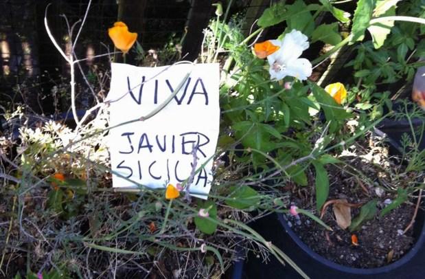 At a garden on Shotwell: Estamos contigo, Javier Sicilia