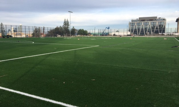 Franklin Square Field Reopens After Facelift