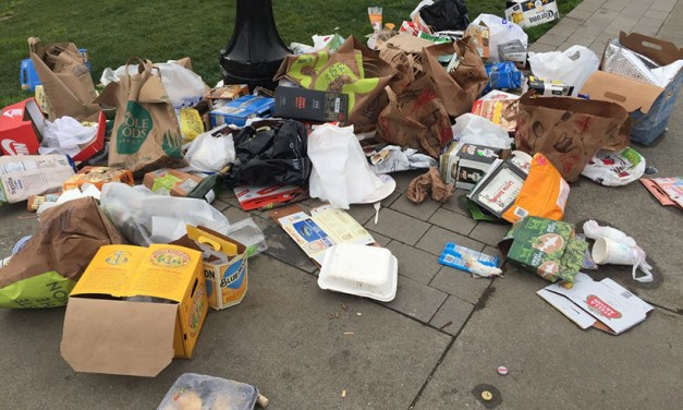 """Mission Dolores residents tired of trash and homeless encampments, explore forming a """"green benefit district"""""""