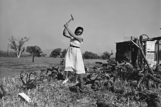 Documentary 'Adios Amor' Adds Lost Chapter to Farmworker Organizing Movement