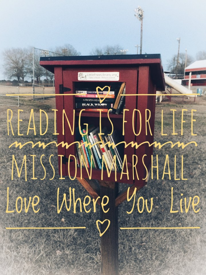 Little Free Libraries - Mission Marshall