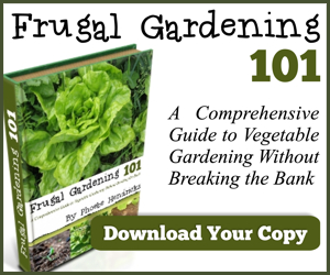 Frugal Gardening 101- Save on produce by growing your own!