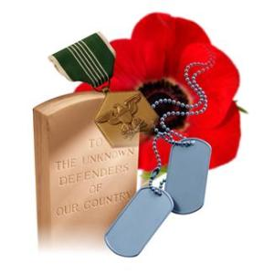 red poppy for military remembrance