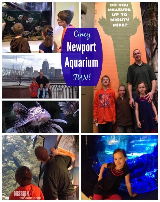 Cincy Newport Aquarium