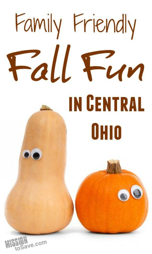 Fun pumpkins with text fall fun in central Ohio