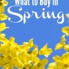 What to Buy in Spring (To Save Money)