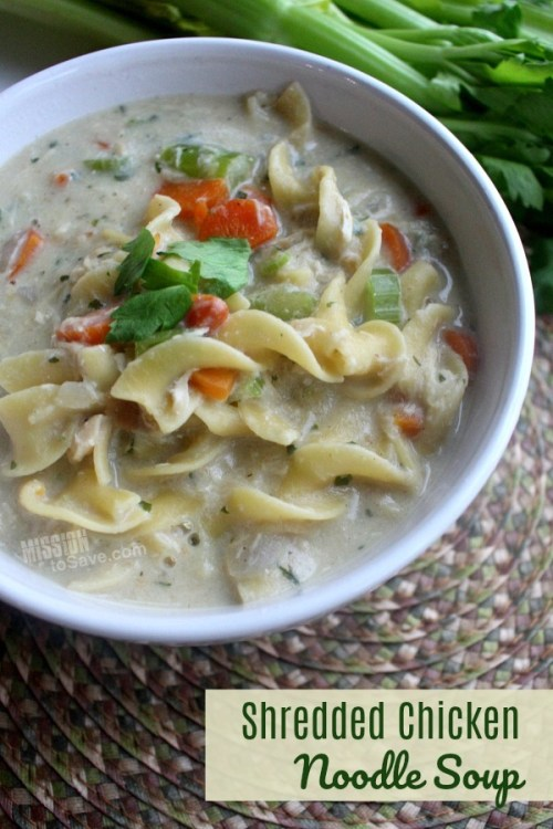Creamy Shredded Chicken Noodle Soup in a bowl