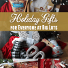 Find the Perfect Holiday Gifts for Everyone at Big Lots