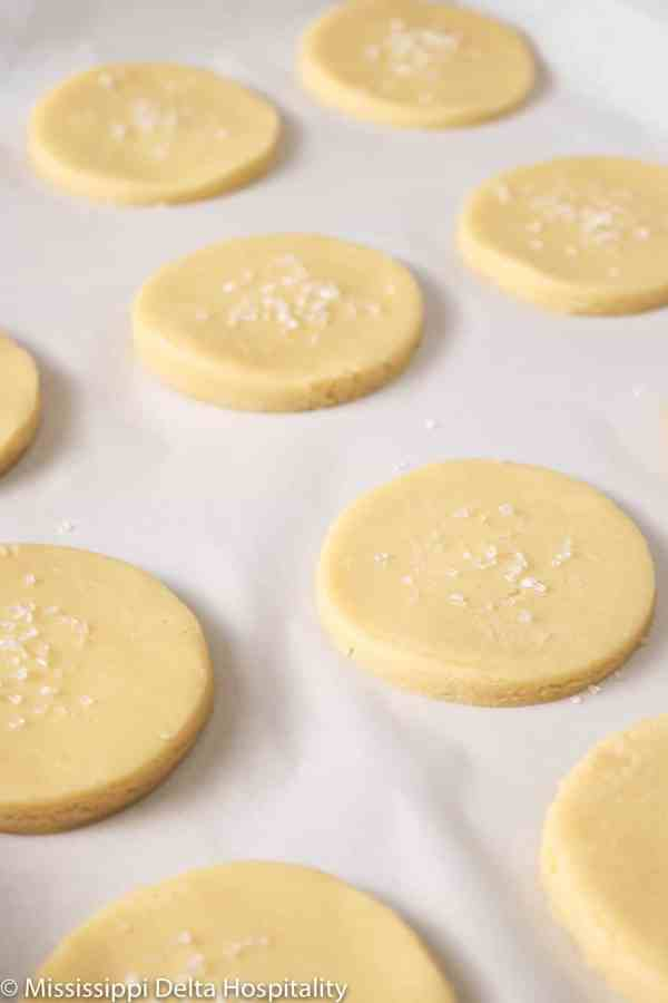 sugar cookies on a sheet pan with sugar on top