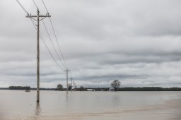Flood waters in Issaquena County Friday, April 5, 2019.