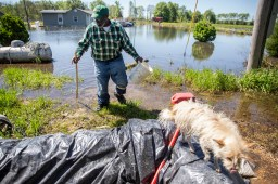 Anderson Jones Sr. looks at the flooding near his home in Fitler, Miss., Monday, April 15, 2019.