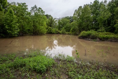 Flood waters from Tchula Lake, seen directly behind Jennie Jefferson's home, has risen due to heavy rainfall.