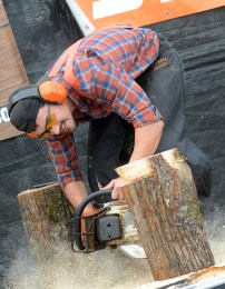 Zack the Lumberjack touted his skills as a chainsaw wielding artisan who would wow the crowd by carving a bunny rabbit from a log. His audience sat up a little straighter in anticipation.
