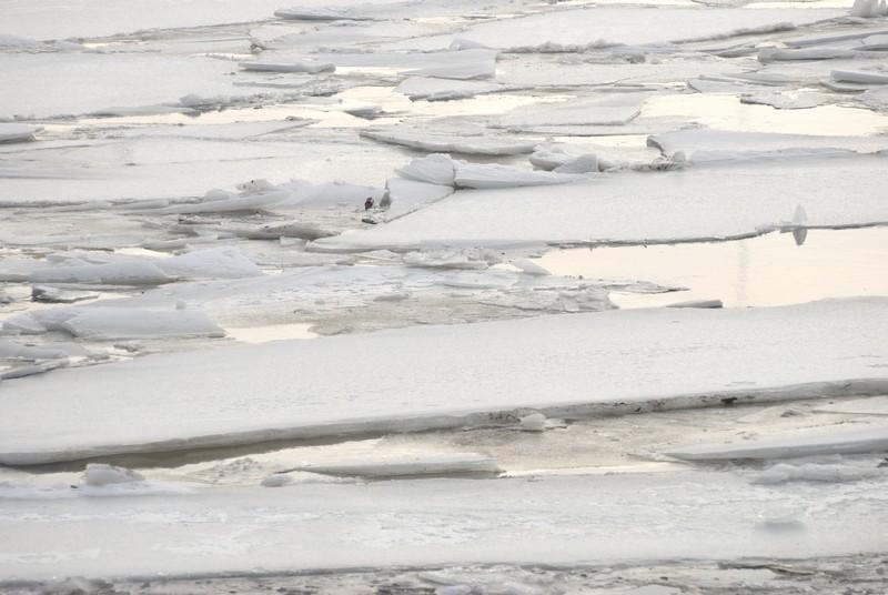 tn_Mississippi River Ice05