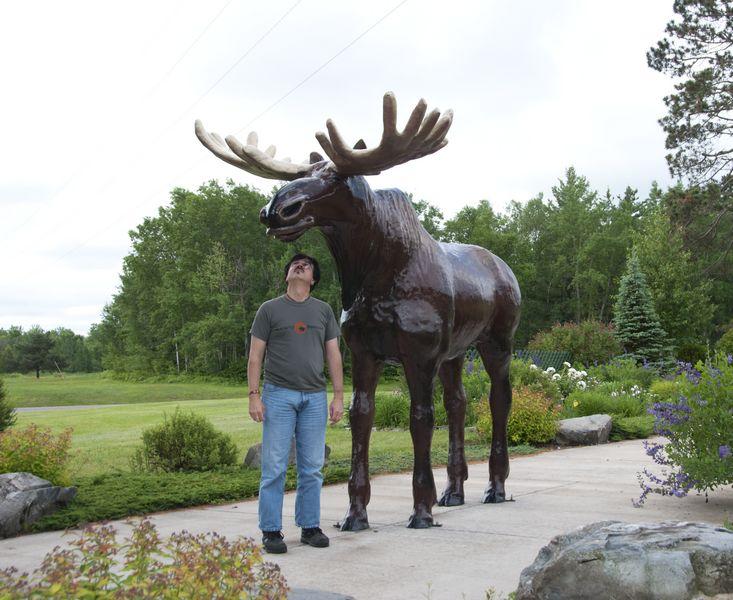 Moose Lake, MN