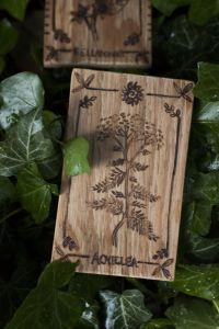 Décoration carte de tarot en bois inspirée des gravures anciennes botaniques de plantes, naturalisme, achillée millefeuille, upcyclé, par l'atelier de la Lettre aux ours - Missive to Bears, artisanat écologique et français en Normandie