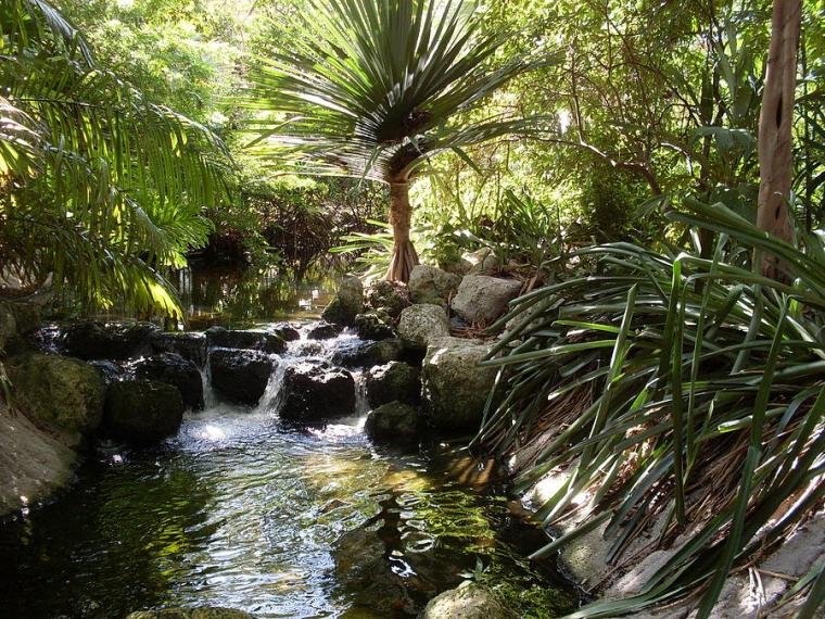 jungle-waterfall-in-miami-lisa-anne-riley