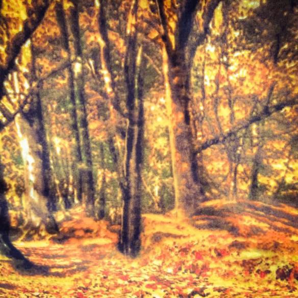 misskittenheel vintage plussize modcloth retrolicious autumn forest 08