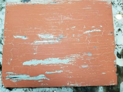 Moo Paint Sample