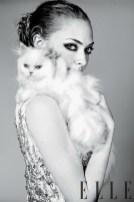 amanda-seyfried-with-cat