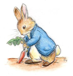 Beatrix Potter rabbit