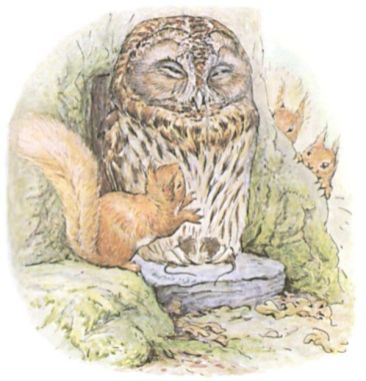 owl and squirrel Potter