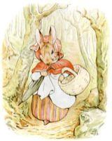 potter illustration