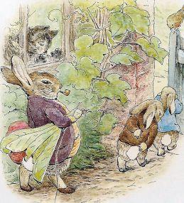 potter rabbits cat