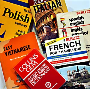dictionaries for foreign languages