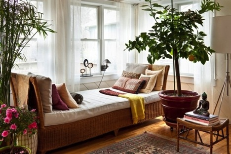 living room with trees is a healthy space