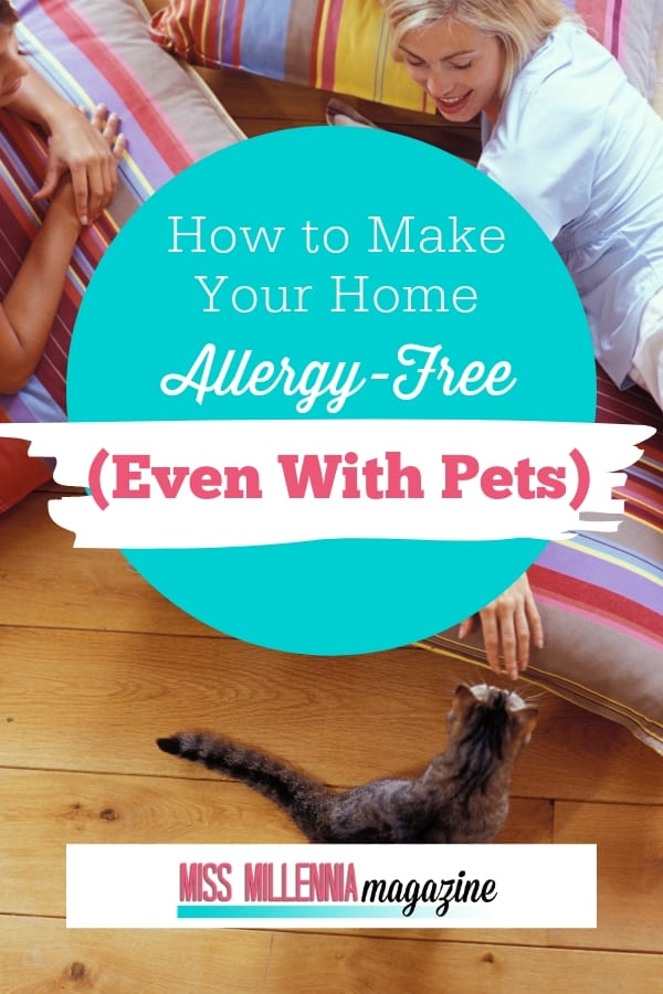 How to Make Your Home Allergy free even with a pet: Here I want to share my tips on keeping your house allergy-free at home even if you are a pet owner.