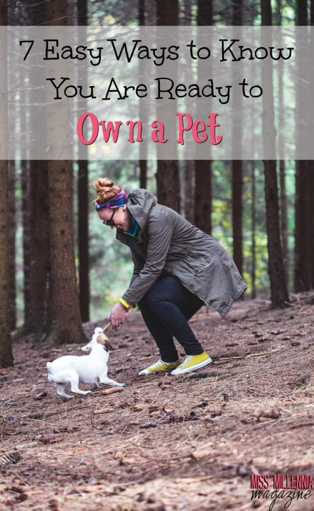 7-easy-ways-to-know-you-are-ready-to-own-a-pet