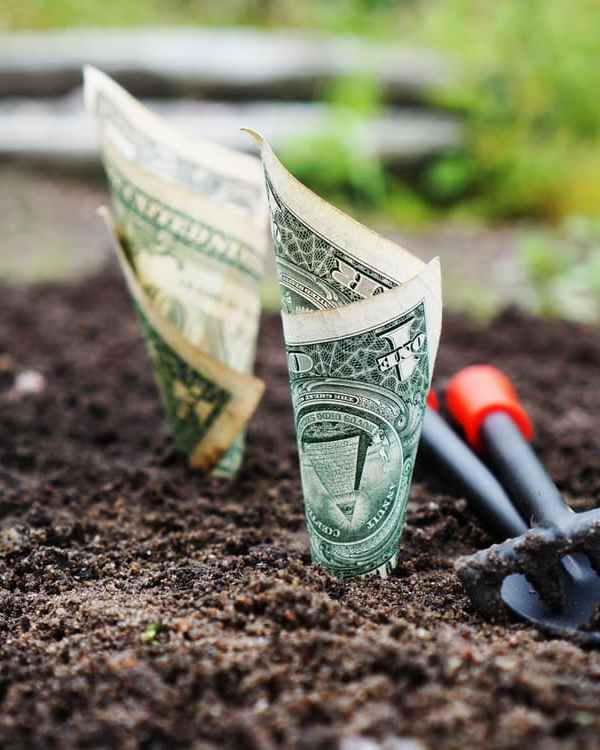 How to Mindfully Grow Your Finances