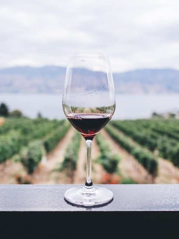 4 Tips for Choosing a Restaurant Wine While Traveling